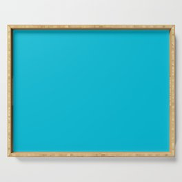 Turquoise color Serving Tray