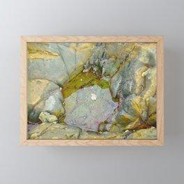 Natures Art 4 Framed Mini Art Print