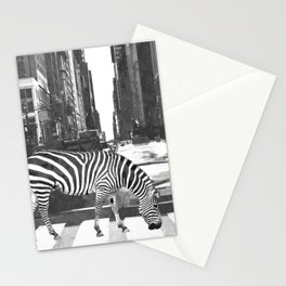 Black and White Zebra in NYC Stationery Cards