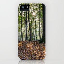 Beech Woodland Sunrise iPhone Case
