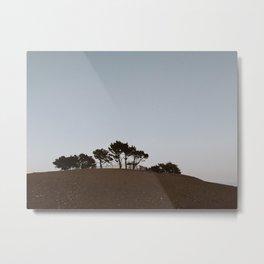 BLUE II / San Francisco, California Metal Print