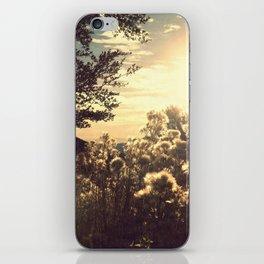 Sunkiss iPhone Skin