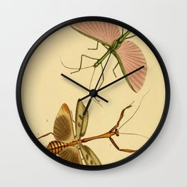 Naturalist Stick Bugs Wall Clock