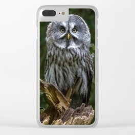 great gray owl Clear iPhone Case