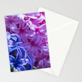 Spring Flowers Series 24 Stationery Cards
