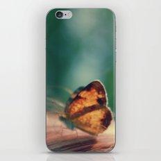 butterflyyyy iPhone Skin