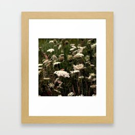 White Fields Framed Art Print