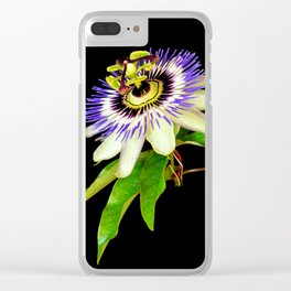 Exotic beauty Clear iPhone Case