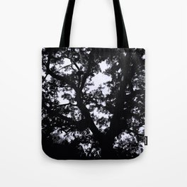 Aganist the Sky Tote Bag