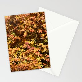 Japanese Maple Fall Leaves Stationery Cards