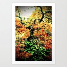 Firey Maple Art Print