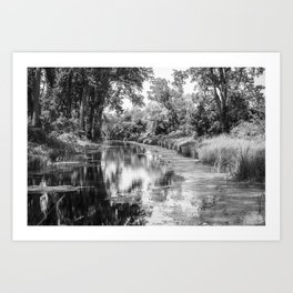 Peaceful Art Print