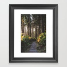 Sunset Path Framed Art Print