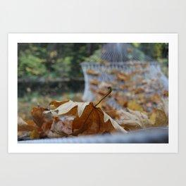 Leaves are falling Art Print