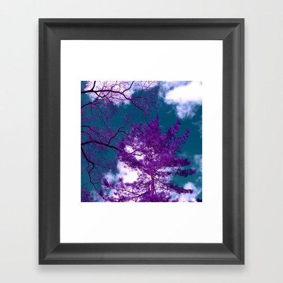 purple fir-tree II Framed Art Print