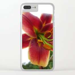'Stargazer' Lily Clear iPhone Case