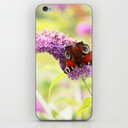 pastel peacock (butterfly) iPhone Skin