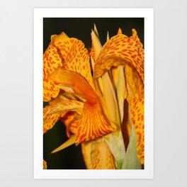 Botanic Beauty Belfast Art Print