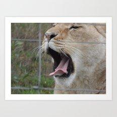 Yawning... Art Print