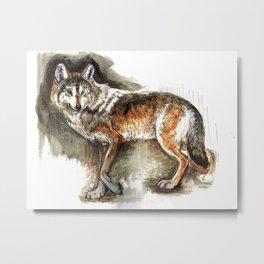 Totem Mexican Wolf ( Watercolor ) Metal Print