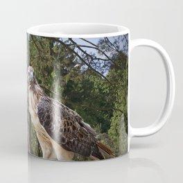 Pair of Red-tail Hawks Coffee Mug