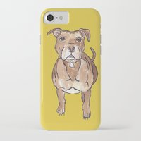 pitbull iPhone & iPod Cases featuring Pitbull by Tammy Kushnir