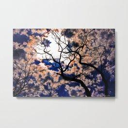 Sky Tree Metal Print
