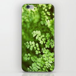 maidenhair iPhone Skin