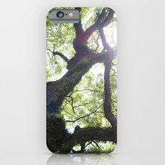 Earth beat Slim Case iPhone 6s