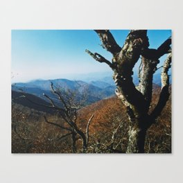 View from the Craggies Canvas Print