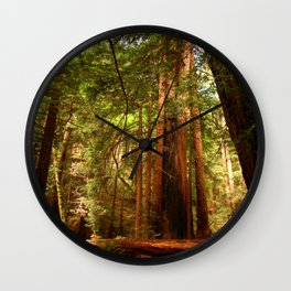 Muir Woods Walkway Wall Clock