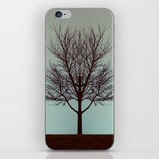 Branching into Symmetry iPhone & iPod Skin