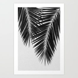 Palm Leaf Black & White II Art Print