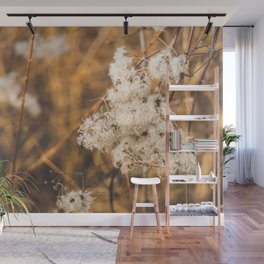 Warm Winter Afternoon Wall Mural