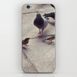 I envy birds iPhone Skin