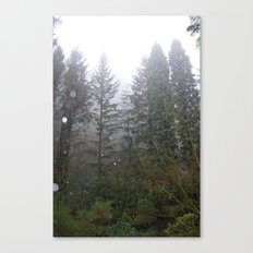 Rainy Foggy Day in the Portland Forest Canvas Print