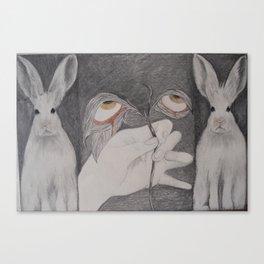 Lave: Saint Luce and rabbits Canvas Print