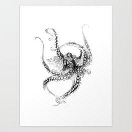 Giant Octopus Art Print