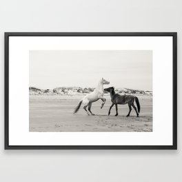 Wild Horses 5 - Black and White Framed Art Print