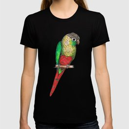 Conure with a heart on its belly T-shirt