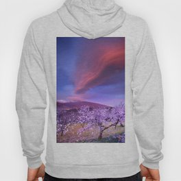 Lenticular clouds over Sierra Nevada and almonds Hoody