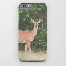 DEER PHOTOGRAPH Slim Case iPhone 6s