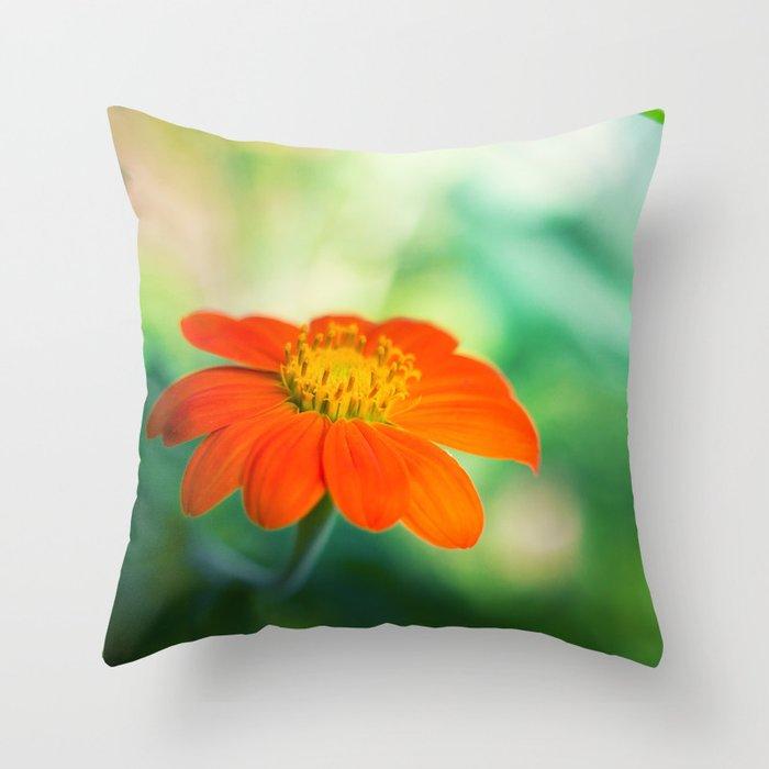 Dear Spring Throw Pillow