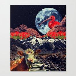 Full Moon Bird Canvas Print