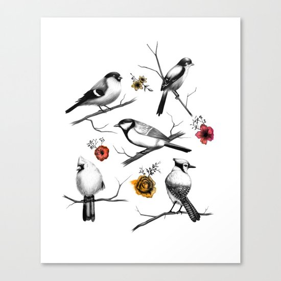 BIRDS & FLOWERS Canvas Print