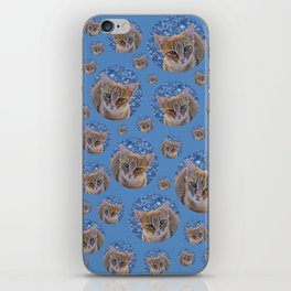 Cats dream iPhone Skin