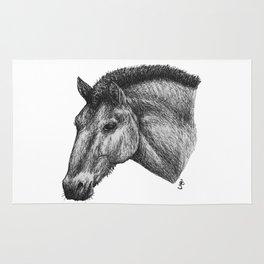 Przewalski's Horse Rug
