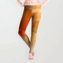 Bearded Iris Orange Harvest Leggings