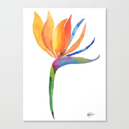 Bird of Paradise Flower Canvas Print