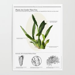 Plants are Cooler Than You Poster